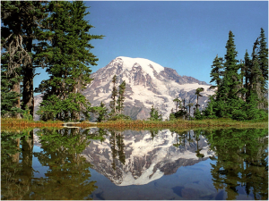 Mount Rainier - reflected in lake